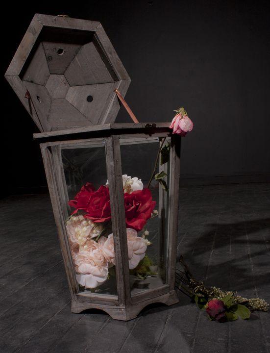Lantern Garden - Kim Dennis