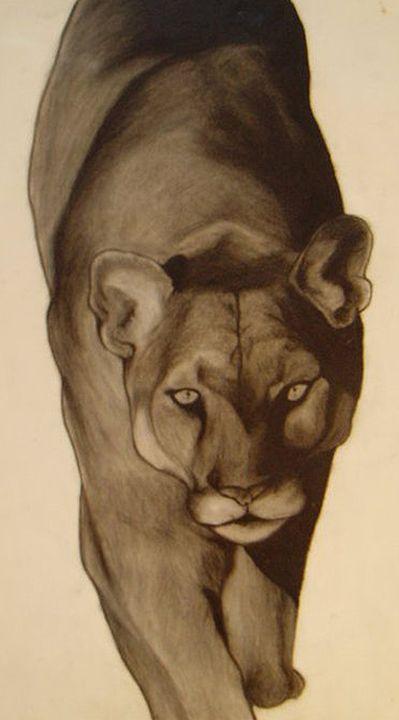 Panther - Kim Dennis