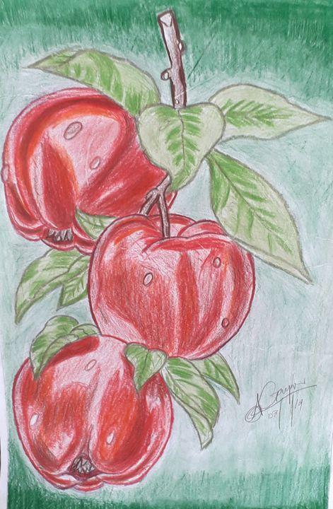 Trio apples - Sani-Art