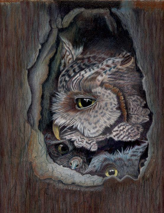 Peekaboo - Dianne Mayne Art