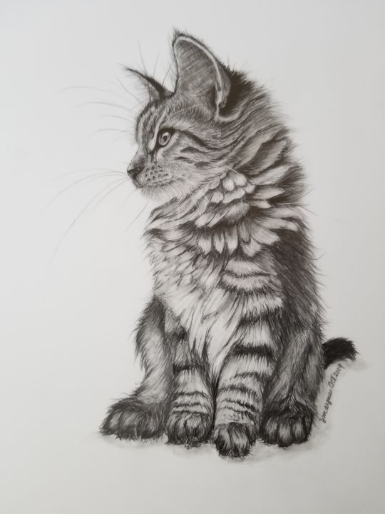 Fluffy Kitty - Dianne Mayne Art