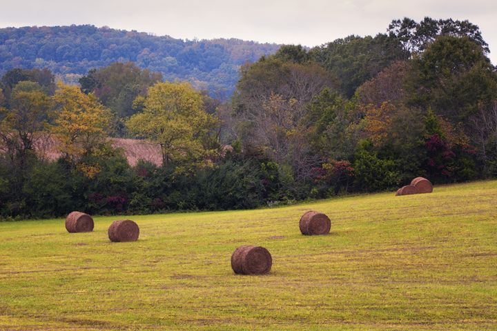 Hay Bales - HF Photography