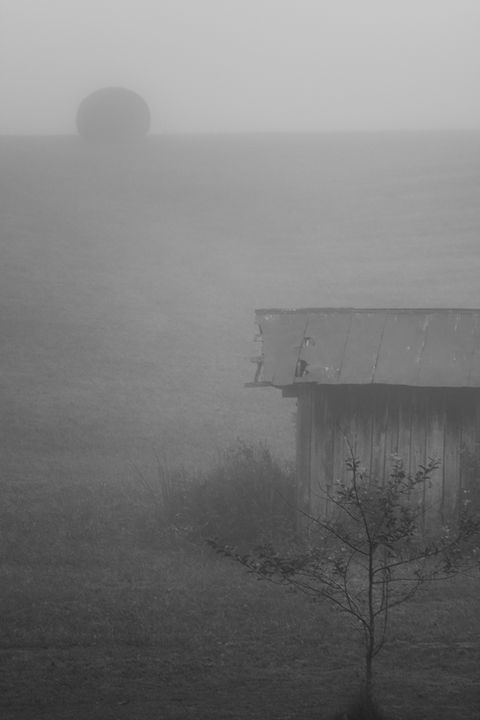 Smokehouse in Fog - HF Photography