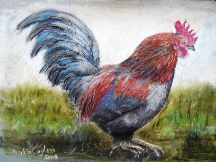 Freerange Chicken - Martin Cayless