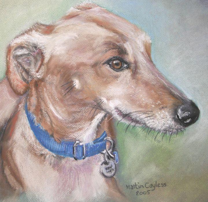 Lurcher Dog Portrait - Martin Cayless