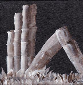 Bamboo 006