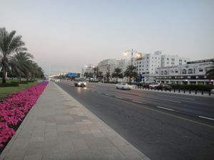 A road, a walkway and Petunias