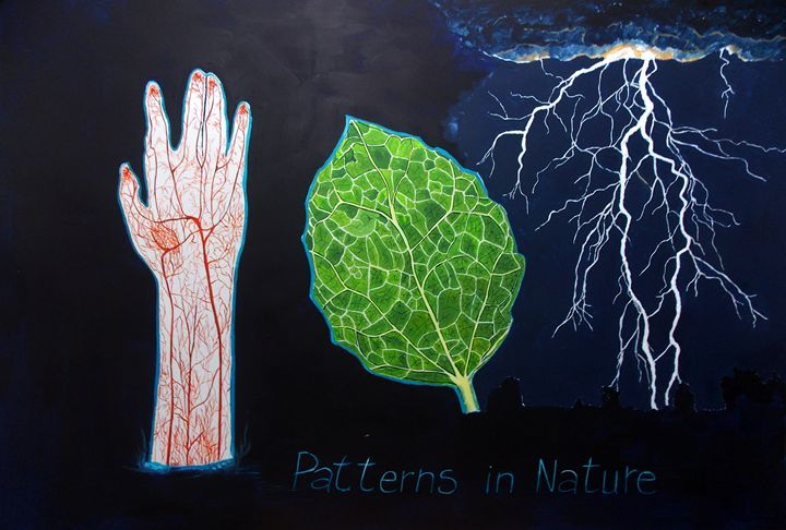 Patterns in Nature - Lazaro Hurtado Art