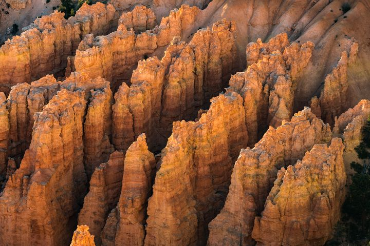 Rows of hoodoos in morning sunshine - Freebilly Photography Portland