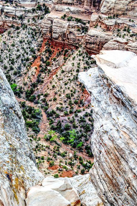 Colorado Landscape Naturalistic Art - Wall Art By AceMe