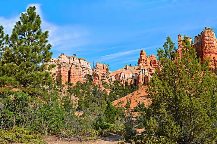 Bryce Canyon Beauty Wall Art - Wall Art By AceMe