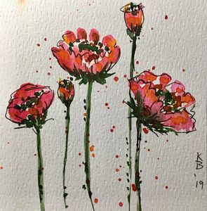 Poppy Splash