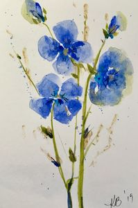 Wildflower in blue