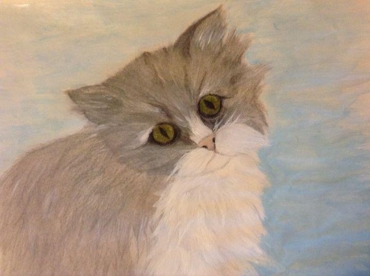 Himalayan Cat - Personalized pet art