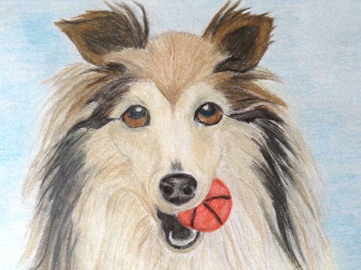 Playful Sheltie dog - Personalized pet art