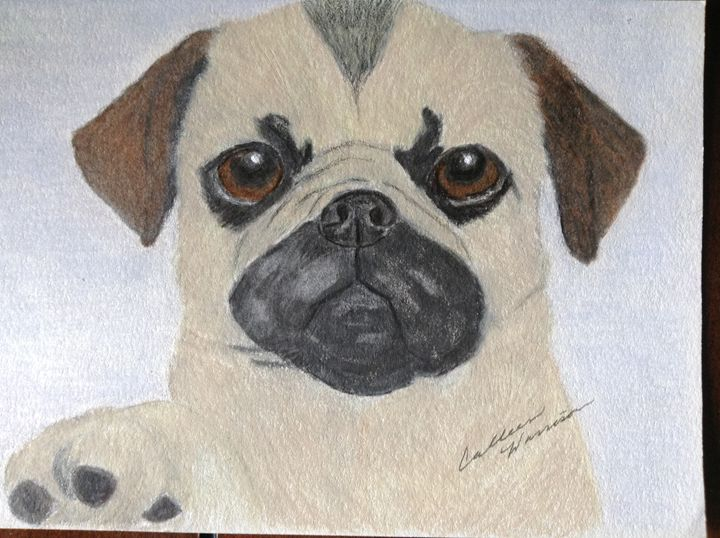 Pug puppy - Personalized pet art