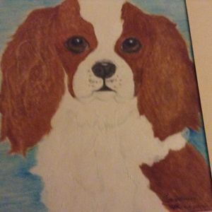 Sweet king cavalier spaniel - Personalized pet art