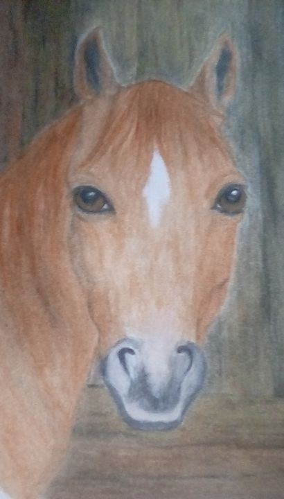 Horse in barn - Personalized pet art