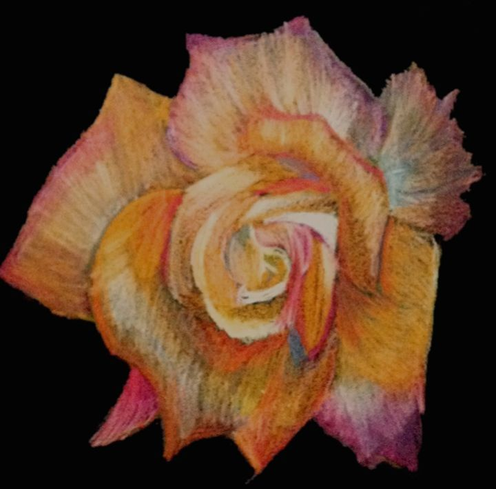 orange rose - Emma's Art