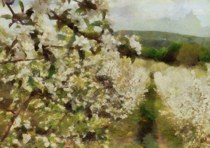 Apple Blossom Spring - Impressionisms