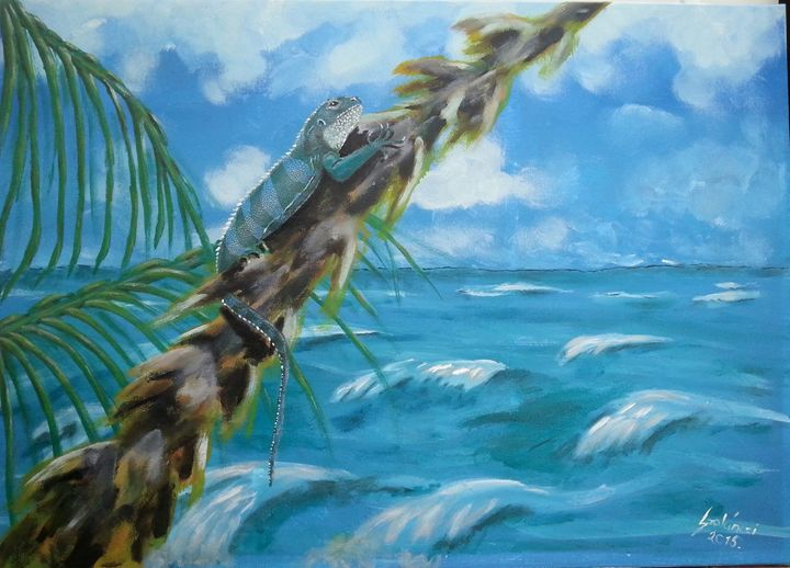 Fiji iguana - Szalanczi