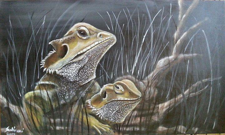 Bearded dragons - Szalanczi