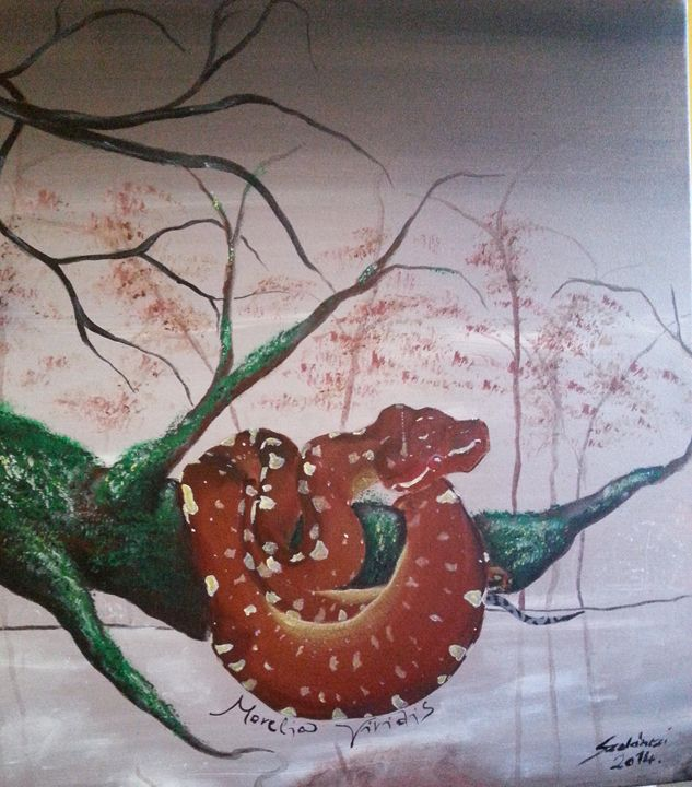 Morelia viridis - Szalanczi