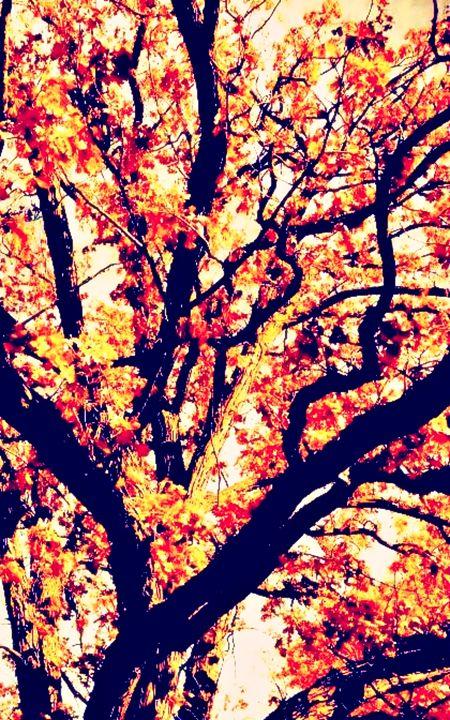 Fall Tree - Amber's Amazing Art