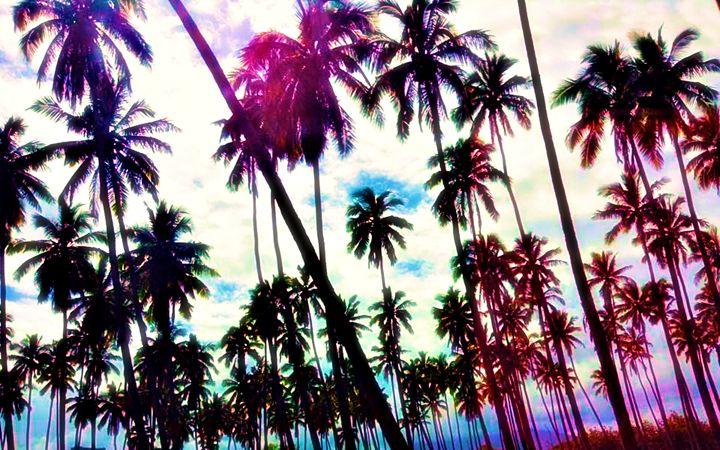 Palm Trees - Amber's Amazing Art