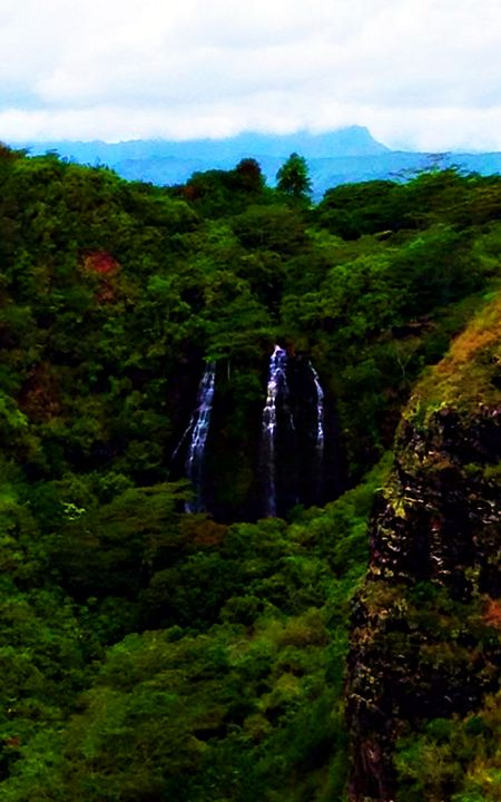Maui Waterfall - Amber's Amazing Art