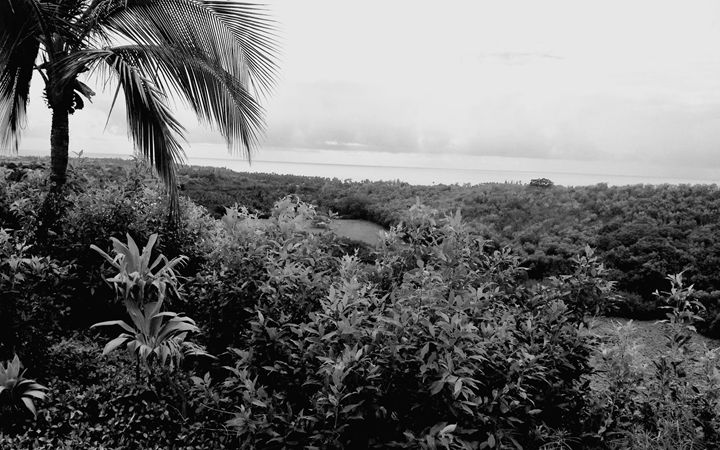 Maui View (Black & White) - Amber's Amazing Art