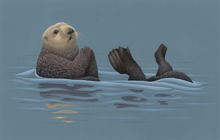 Sea Otter - Great Gray Art
