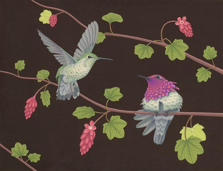 Anna's Hummingbirds - Great Gray Art