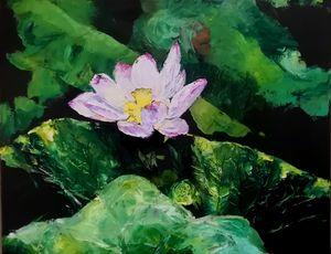 Lotus No.27