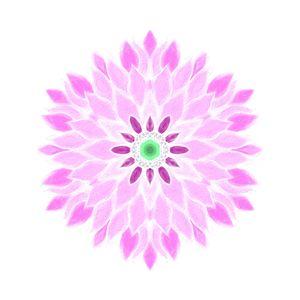purple flower mandala