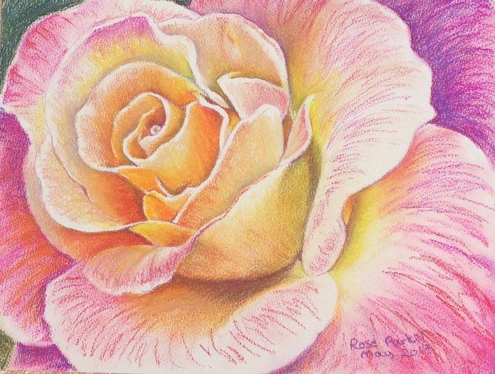 Rose 2 - Rose Parker