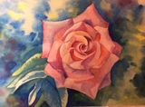 Original watercolour rose