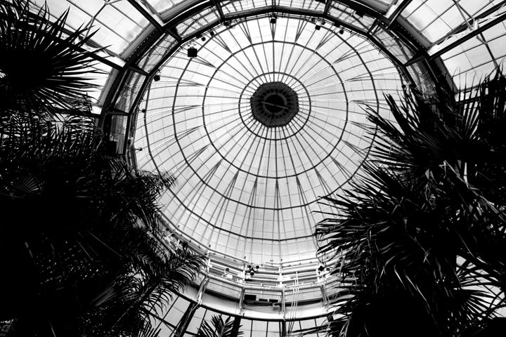The Dome of the Botanical Guarden - Mike flynn