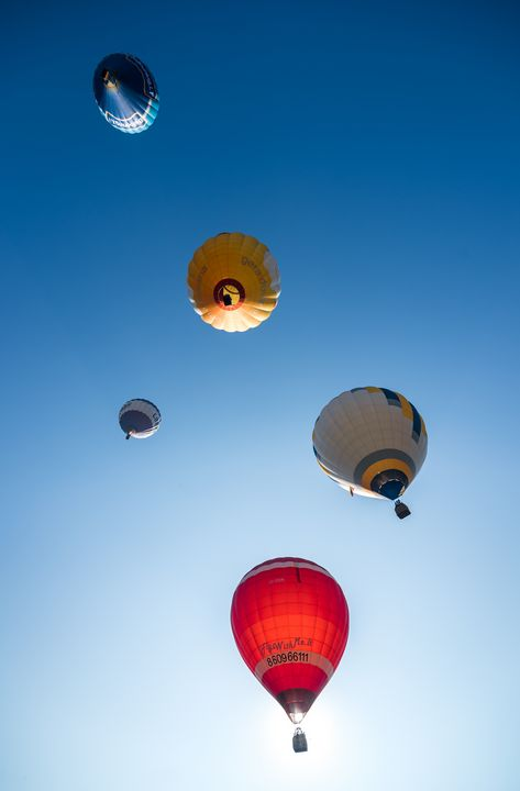 Air balloons from below - HideMyWall