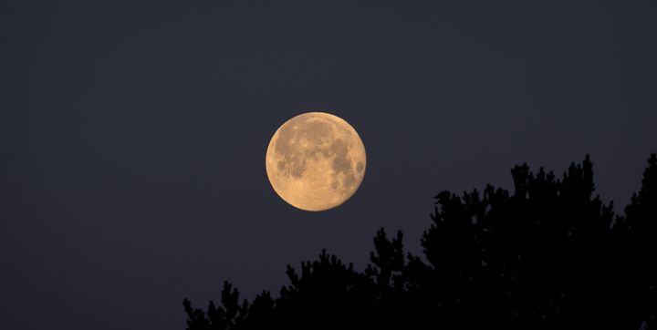Full moon over the threes - HideMyWall