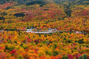 Fall Colors at Pinkham Notch