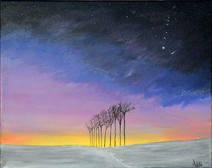 Snowy Night with Star gazing.