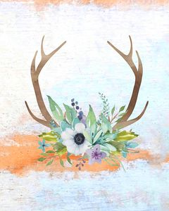 Antlers and Flowers - Paintings by Al