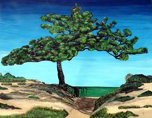 Ocean View Roots Tree