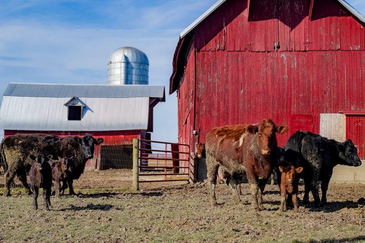 Rockville Farm - Kenneth D. Huskey