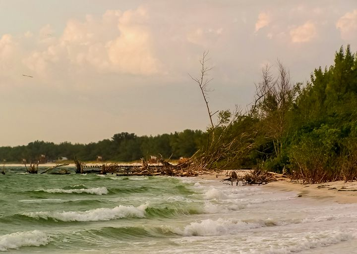 Coquina Storm Surge - Kenneth D. Huskey