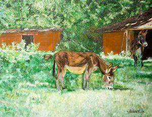 Abadoned Two Donkeys - Adonis Arts