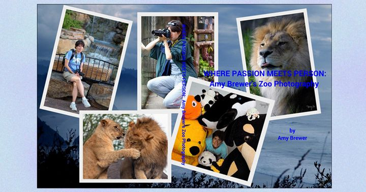Where Passion Meets Person: Zoo - A Learning Adventure Books
