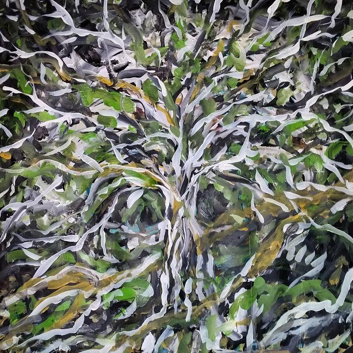 The Watching Tree - Scott S Olson