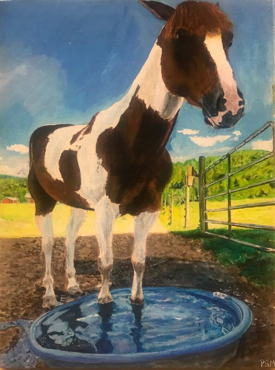 soaking hooves - PBM